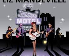 liz-mandeville-the-stars-motel