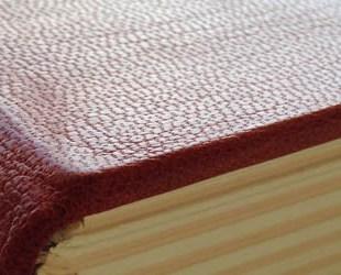 Fine binding in goatskin
