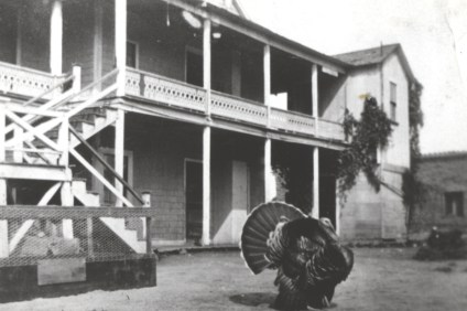Max Mendelson raised his own poultry at the Mendelson Hotel in the late 1800s. Photo: Courtesy of the San Juan Capistrano Historical Society