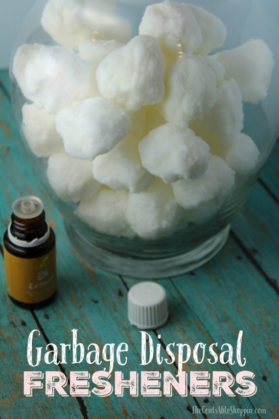 Diy Garbage Disposal Fresheners The Centsable Shoppin