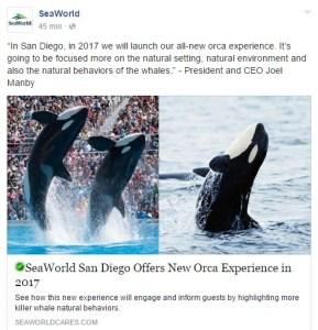 SeaWorld tuit orcas