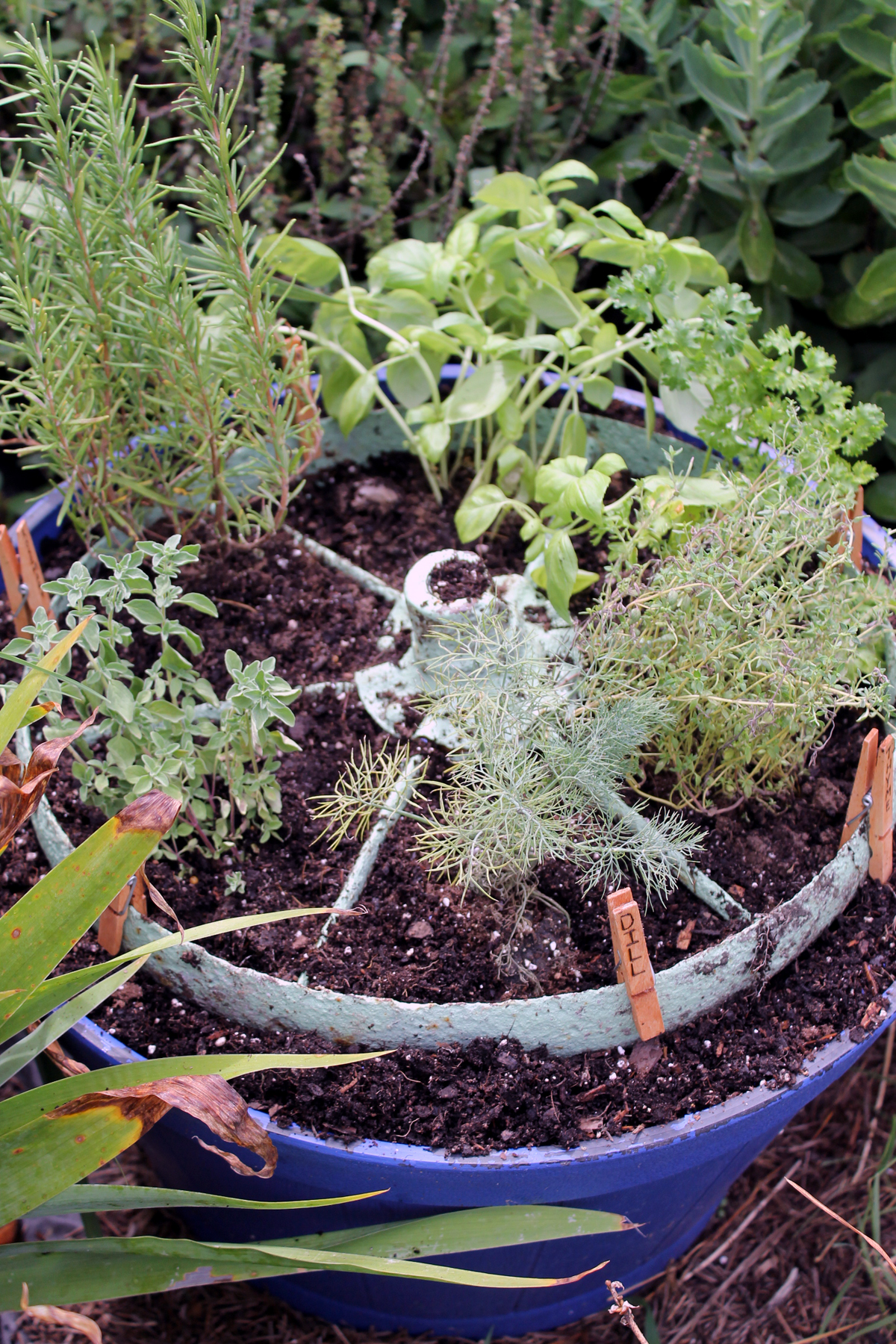Distinguished Apartment Herb Garden Ideas An Plusinstructions Herb Garden Rustic Wheel Country Cottage Herb Garden Ideas Herb Garden Design Make A Rustic Herb Garden garden Herb Garden Idea