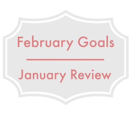 A post to review all that was accomplished in Jan and to look at goals for Feb.