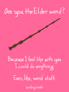 The Elder Wand!