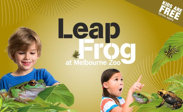 MZ-Leap-Frog-v3-web620
