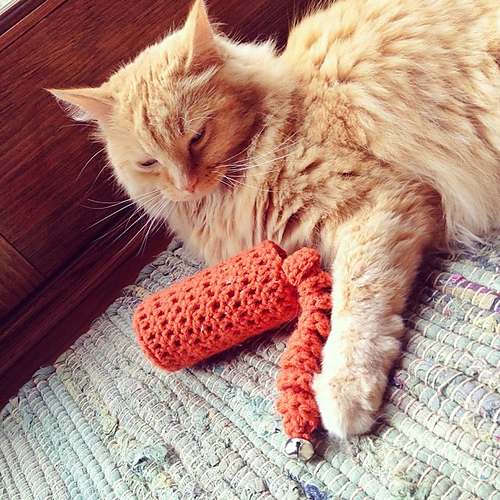 Easy Cat Toy by Dabbles & Babbles