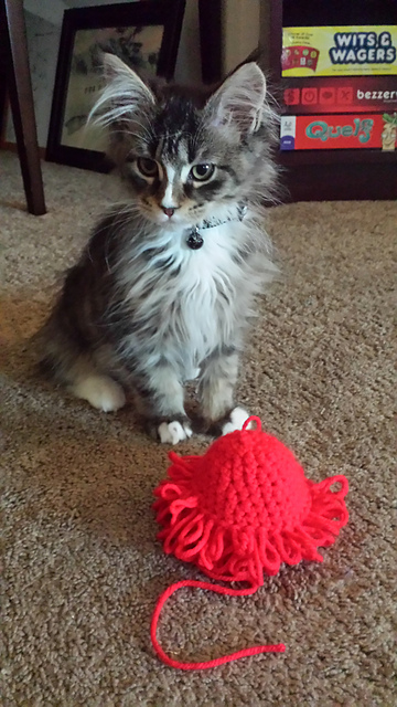 Squibble Cat Toy by Esh Crochet