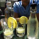 Zazie Lemonade Ingredients