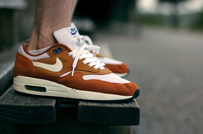 Nike Air Max 1 Curry 10
