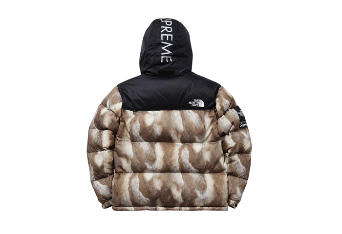 Supreme-The-North-Face-AW13-Outwerwear-02
