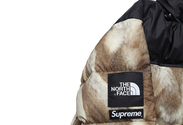 Supreme-The-North-Face-AW13-Outwerwear-03