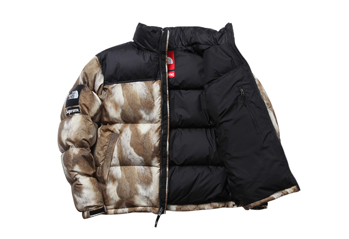 Supreme-The-North-Face-AW13-Outwerwear-05
