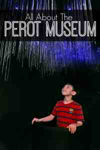 All About the Perot Museum