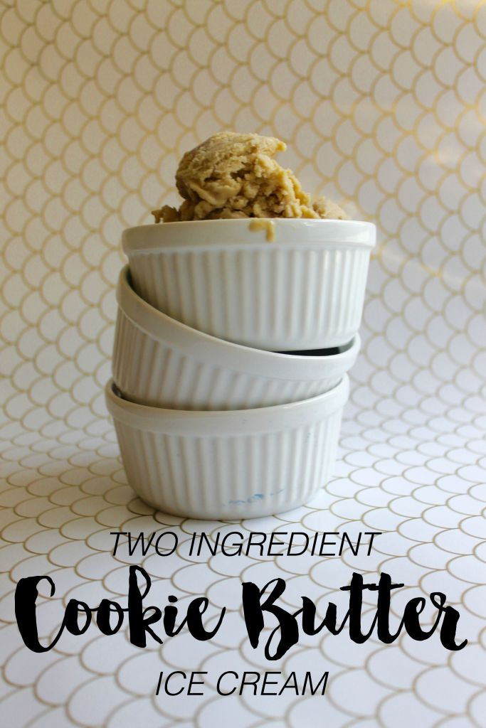two-ingredient-cookie-butter-ice-cream