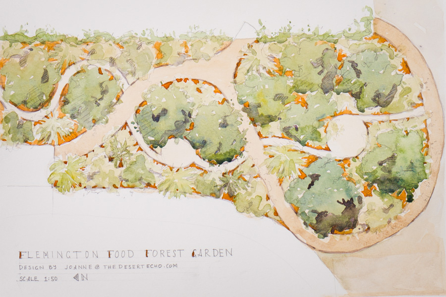 PERMABLITZ TIMELAPSE - FLEMINGTON COMMUNITY FOOD FOREST