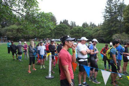 huddart-county-park-ultrarunning-50km (19)