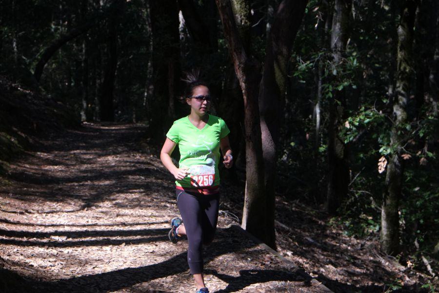 huddart-county-park-ultrarunning-50km (24)