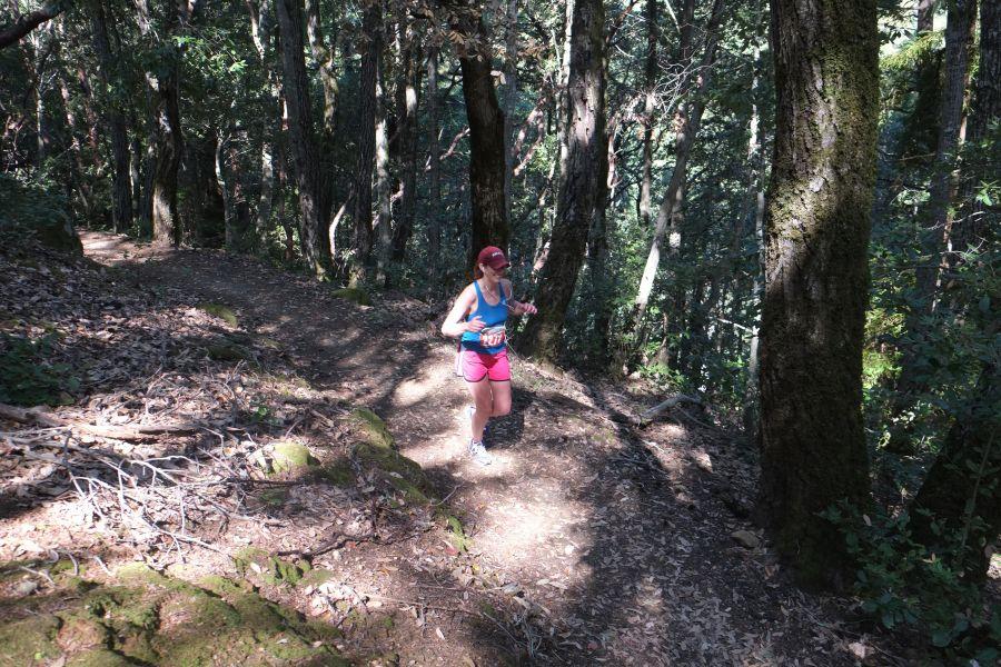 huddart-county-park-ultrarunning-50km (27)