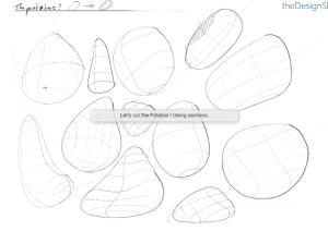 potatoe-contour-lines-sketching