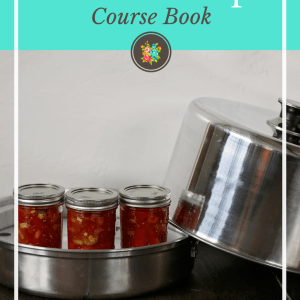 Steam Canning | Get the book that explains how to use a steam canner and how to maximize it's amazing time saving potential!