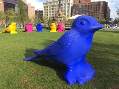 Colorful birds on the grass in the public square. You can see the old white May Company building in the background.