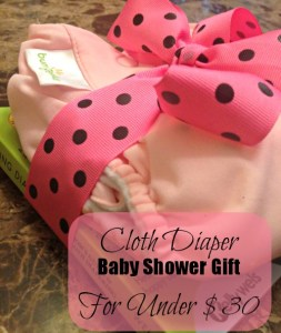 Cloth Diaper Baby Shower Gift for Under $30 @TheEcoChic