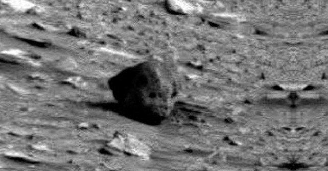 Martian Skull Found?