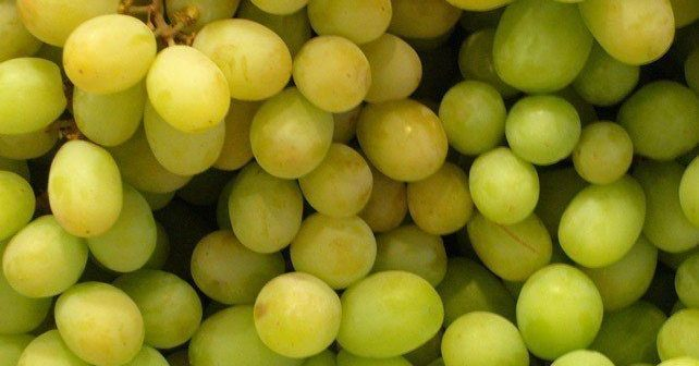 Facts About Grapes
