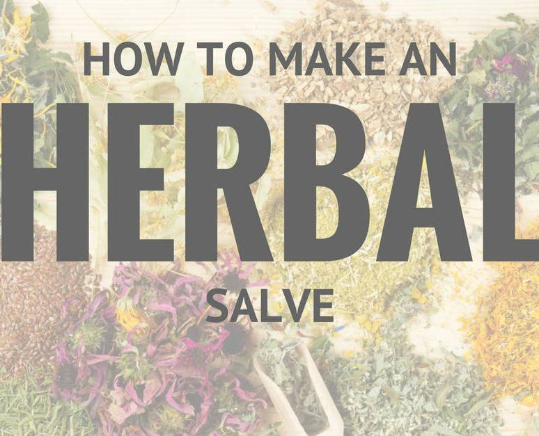 Soothing Salve Recipe: The Simple Herbal Remedy for Bites, Stings, Scrapes, Cuts, and More