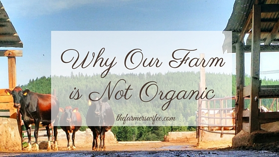 Why Our Farm is Not Organic