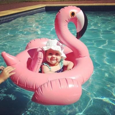 Baby Flamingo- TFL1