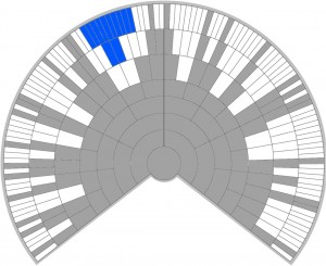 Genetic Tree Showing Ethnicity Loss
