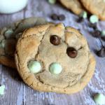 Mint Hot Cocoa Cookies-horizontal