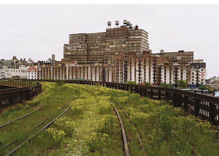 A strech of the derelict High Lane in May 200, before it was regenerated by Jame Corner's Field Operations studio