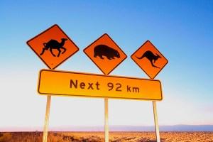 Camel, wombat and kangaroo warning sign. Nullarbor Australia