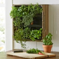 Small Of Vertical Wall Herb Garden