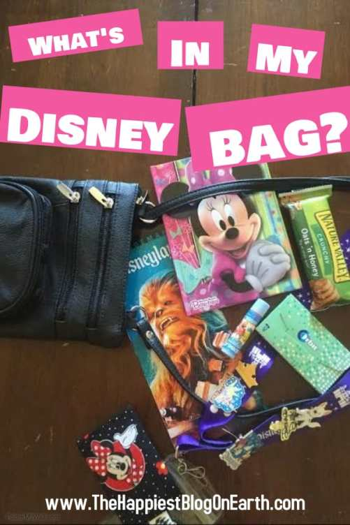 What's in my Disneyland bag?