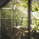 Keep Your Greenhouse Frost Free