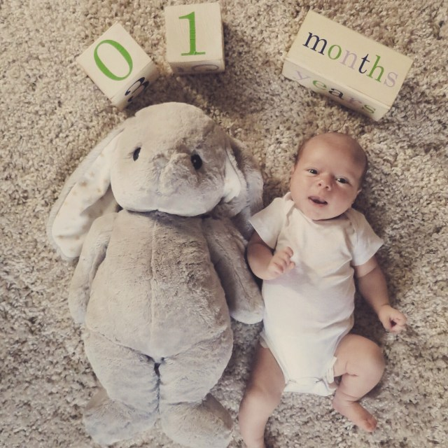 the hess station one month baby blocks photo with stuffed animal prop bunny