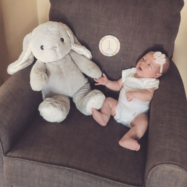 the hess station one month baby chair photo with stuffed animal prop bunny