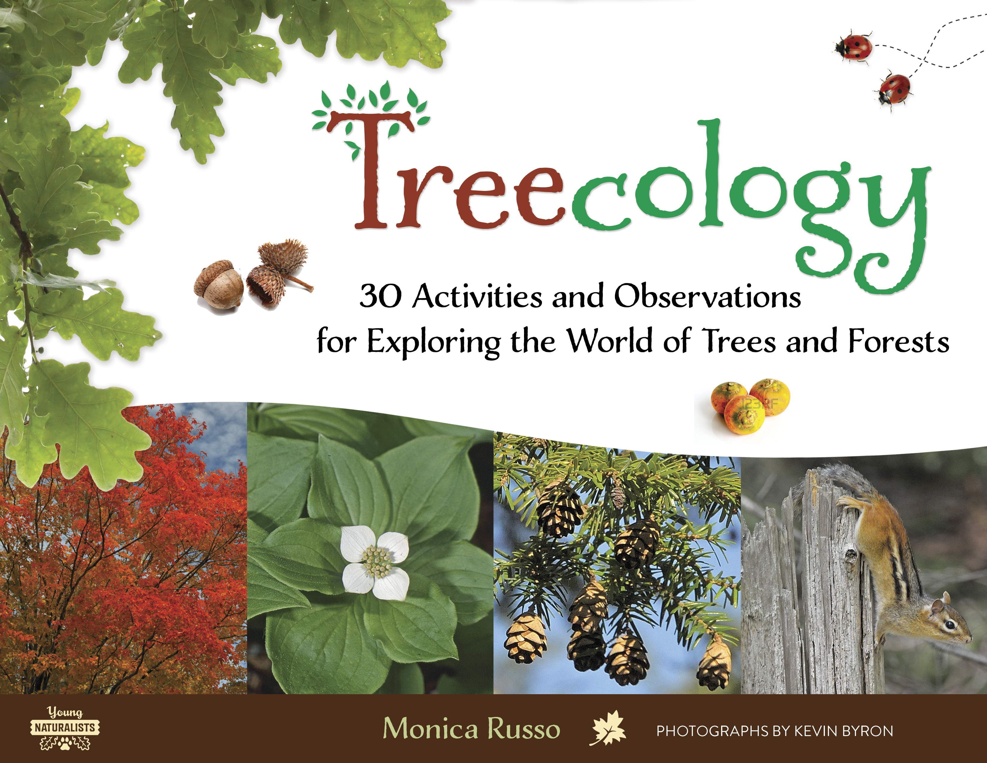 Book Review: Treecology by Monica Russo