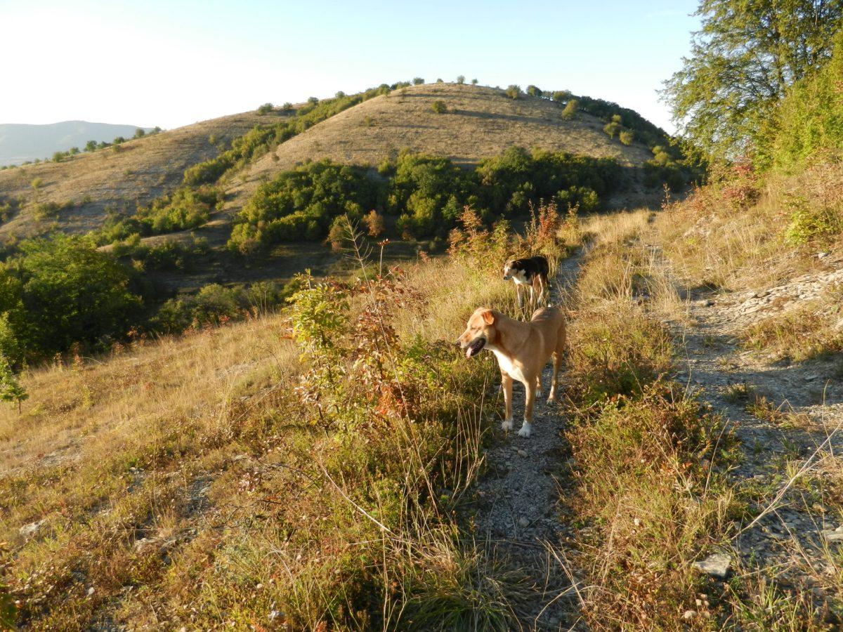 Balkan Trek: First steps through Bulgaria