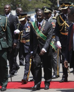 President Mugabe after inspecting the guard of honour.