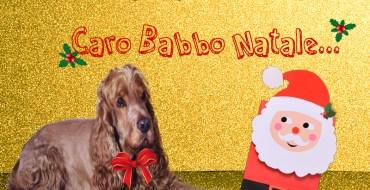 anteprima-caro-babbo