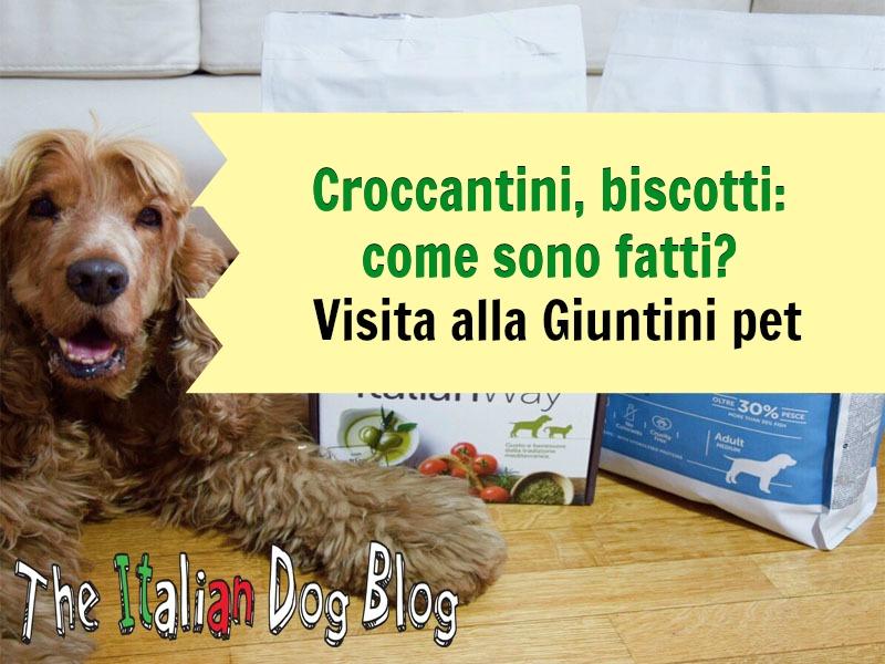 croccantini