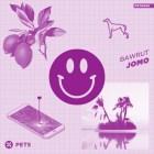 Bawrut – Jomo [Pets Recordings]