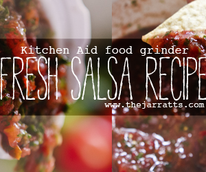 fresh salsa and guacamole recipes
