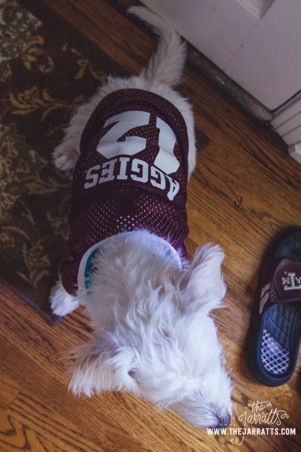 Albert loves his jersey