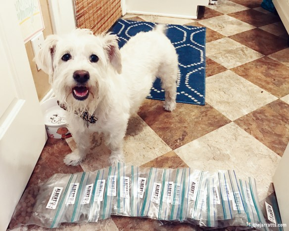 Albie helped pack all his meals and snacks for his resort stay!