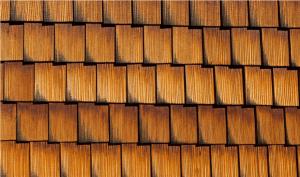 House shingles
